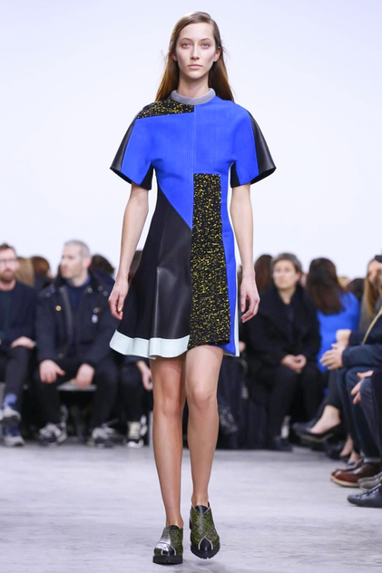 Proenza Schouler, Ready to Wear, Fall Winter, 2014, New York